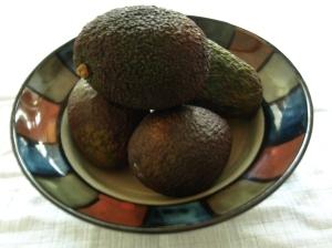 avocado heaven